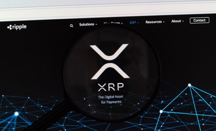 Ripple Logo under magnifying glass, with a dark background.